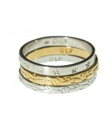 Delphes Ring mit Verzierung